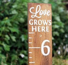 Love Grows Here Height Chart Gifts Wood Height Chart