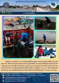 ศูนย์วิจัยและพัฒนาประมงทะเลนราธิวาส