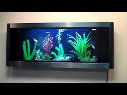 best wall mounted fish tanks in 2021