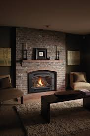 fireplace electric fireplace insert no heat home design furniture decorating simple at home ideas electric