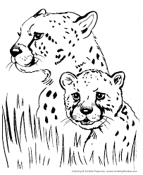 Small Picture Simple Farm Animal Coloring Pages Coloring Pages