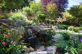beautiful garden pond waterfalls design