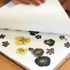 Flower Pressed Paper Pressing Flowers Finegardening