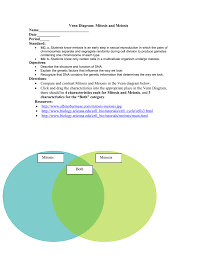 Venn Diagram Comparing Meiosis And Mitosis Venn Diagram Mitosis And Meiosis