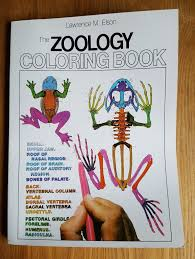 zoology textbook the zoology colouring book by l m elson paperback 1982