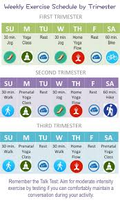 Weekly Exercise Schedule By Trimester Elm Tree Medical