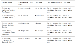 Dog Feeding Tips How Much And How Often Should I Feed My