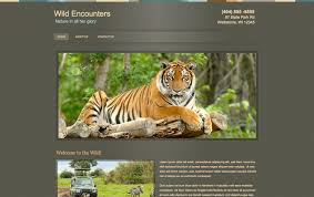 build a free website online free website builder create free websites webs
