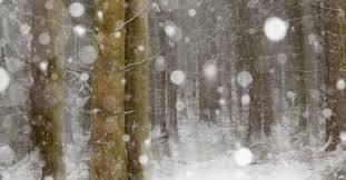 Ice And Snow Scenes Assignment Winner Henrik Spranz Outdoor