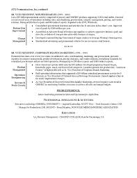 retail executive resume example best executive resume format