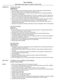 Download AML Manager Resume Sample as Image file