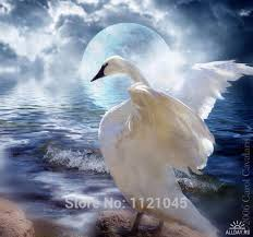 diamond embroidery flying swan flying swan painting