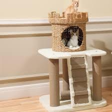 designer cat trees furniture. Perfect Trees Image Of Contemporary Cat Trees Table Top In Designer Furniture F