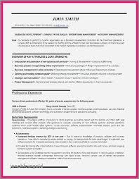Promotional Resume Sample Impressive Advertising Sales Representative Sample Resume Simple Resume