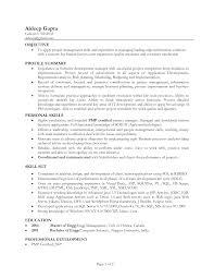 Sample Profile Statement For Resume Resume Sample with Profile Statement Danayaus 94