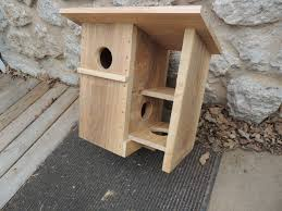 flying squirrel houses plans elegant squirrel home designs bird of flying squirrel houses plans elegant