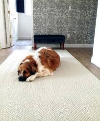 best area rugs for pets best area rugs for pets rug material in ideas 4 pertaining