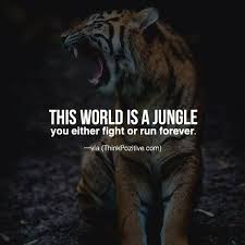 Best Quotes In The World New Positive Quotes This World Is A Jungle You Either Fight Or Run