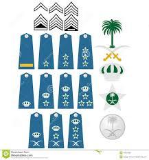 Air Force Insignia Saudi Arabia Stock Vector Illustration
