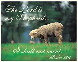 Image result for psalm 37:6