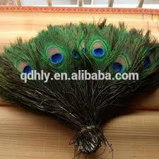 Factory Direct Sale Spot Supply <b>Top Quality Peacock Feather</b> - Buy ...