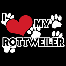 Small Picture Free coloring pages of rottweiler puppy Rottweiler Pinterest