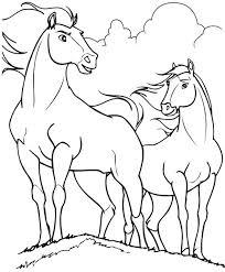 Cavalli Selvaggi Da Colorare Cose Per Crescere