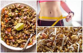 can sprouts help with weight loss