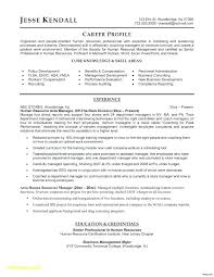 Microsoft Word Resume Formats Resume Template For Word Excellent ...