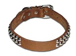 signature bully 2 row cone ornamented fancy dog collar