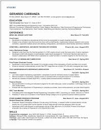 Professional Resume Writers Mesmerizing Professional Resume Writers Executive Resume Samples Ambfaizelismail