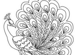 Small Picture Peacock Coloring Pages Coloring4Freecom