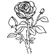 Color in this picture of a rose and others with our library of online coloring pages. Top 25 Free Printable Beautiful Rose Coloring Pages For Kids