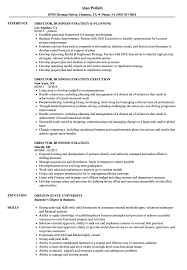 Download Director, Business Strategy Resume Sample as Image file