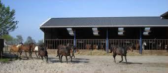 Paardenopfok d aerdekenshof - home facebook
