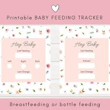Baby Bottle Feeding Chart Newborn Feeding Tracker Baby Schedule Printables Printable Baby Log Baby Care Log Breastfeeding Log Instant Download