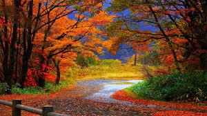 Autumn Wallpaper Hd - 1366x768 ...