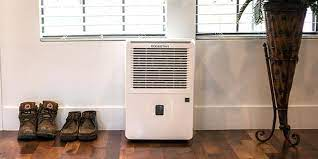 dehumidifier features what to look for