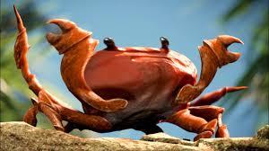 crab rave ear