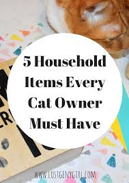 5 Household Items Every Cat Owner Must Have #RollAwayLint #ad