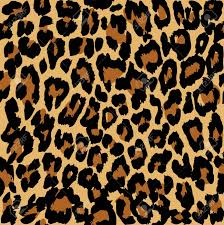 Leopard Pattern Fascinating Leopard Pattern Vector Royalty Free Cliparts Vectors And Stock