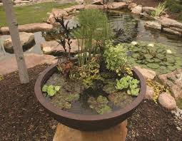aquascape aquatic patio pond 24