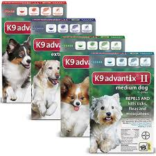 pictures of dogs for free 2. Exellent Free K9 Advantix II In Pictures Of Dogs For Free 2