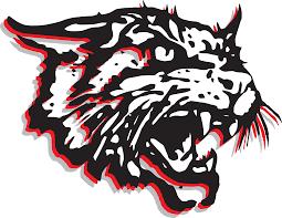 Image result for bobcat mascot