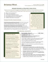Professional Resume Service Fresh Resume Writting Elegant Resume