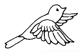 coloring book pages birds