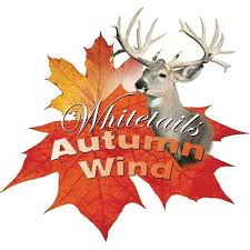 Image result for autumn wind images