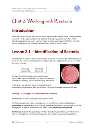 Identification Of Bacteria