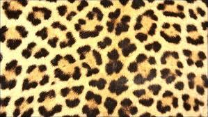 animal print area rugs target cheetah rug flooring large round zebra