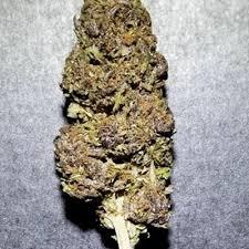 Apple Jager Green Leaf Special 00513 Marijuana Order